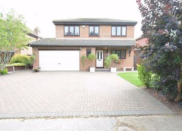 Thumbnail 4 bed detached house for sale in Annabell Avenue, Orsett, Essex