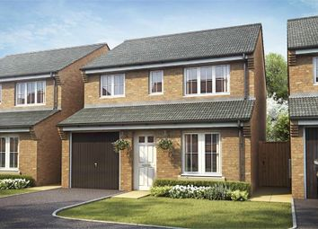 Thumbnail 3 bedroom detached house for sale in Dragonfly Meadow, Pineham, Northamptonshire