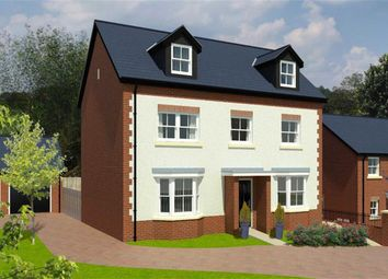 Thumbnail 5 bed detached house for sale in Birch Grove, Gloucester Road, Chepstow, Gloucestershire