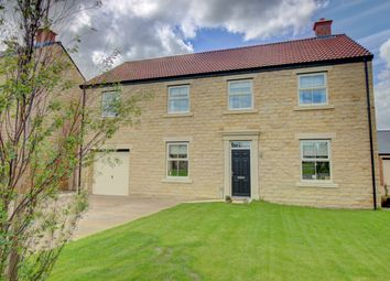 Thumbnail 5 bed detached house for sale in Creighton Place, Embleton, Alnwick