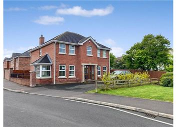 Thumbnail 4 bed detached house for sale in Dermont Crescent, Newtownabbey