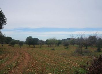 Thumbnail Land for sale in 07208 Es Carritxo, Illes Balears, Spain