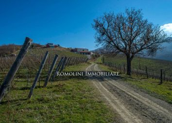 Thumbnail Commercial property for sale in Cinigiano, Tuscany, Italy