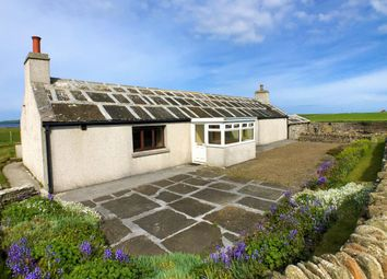 Thumbnail 2 bed detached bungalow for sale in Roadside, Rackwick, Westray, Orkney