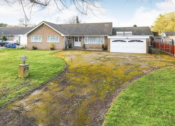Thumbnail 5 bed bungalow for sale in Blunts Hall Drive, Witham