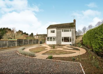 Thumbnail 4 bed detached house for sale in Denham Drive, Guys Marsh, Shaftesbury