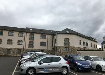 Thumbnail 1 bed flat to rent in Teign Road, Newton Abbot