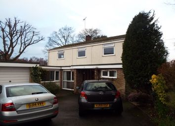 Thumbnail 4 bed detached house to rent in School Road, West Wellow, Romsey