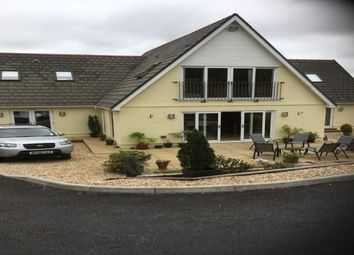 Thumbnail 4 bed property to rent in Porthyrhyd, Carmarthen