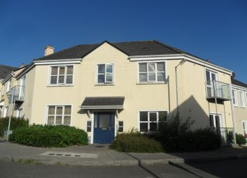 Thumbnail 1 bed apartment for sale in 7 Tullaskeagh Road, Roscrea, Tipperary