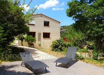 Thumbnail 5 bed villa for sale in Sorède, Pyrénées-Orientales, Languedoc-Roussillon