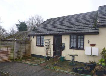 Thumbnail 2 bed terraced bungalow to rent in Stapledon Cottages, Holsworthy, Devon