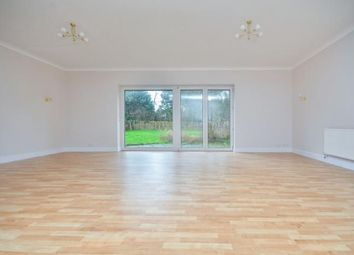 Thumbnail 3 bed bungalow for sale in Ashford Road, Newingreen, Hythe, Kent