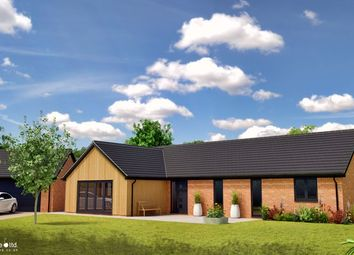 Thumbnail 3 bed detached bungalow for sale in Sneath Road, Aslacton, Norwich