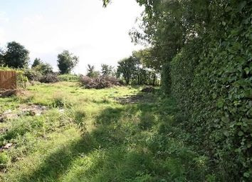 Thumbnail 5 bedroom property for sale in St. Peters Close, Rockland St. Peter, Attleborough