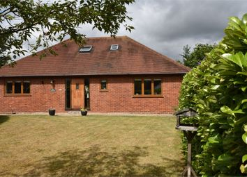 Thumbnail 4 bed detached bungalow for sale in Terrace Road North, Binfield, Berkshire