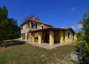 Thumbnail Country house for sale in Offida, Ascoli Piceno, Marche, Italy