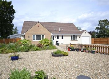 Thumbnail 4 bed detached bungalow for sale in Gorse Cover Road, Bristol