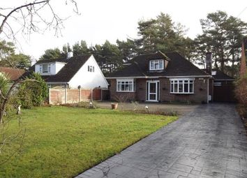 Thumbnail 4 bedroom bungalow for sale in New Road, West Parley, Ferndown