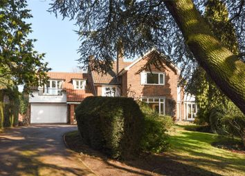 Thumbnail 5 bed detached house for sale in Albion Hill, Loughton, Essex