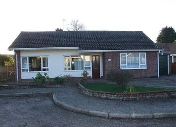 Thumbnail 3 bedroom bungalow to rent in Homestead Close, Lingwood, Norwich