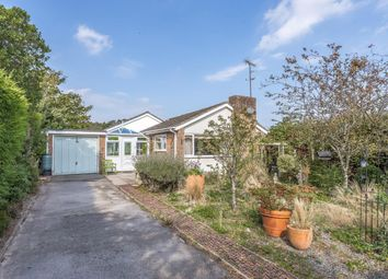 Thumbnail 3 bed detached bungalow for sale in Arun Vale, Coldwaltham, Pulborough, West Sussex