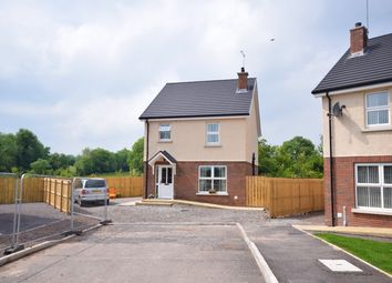 Thumbnail 3 bedroom detached house for sale in Hutton Drive, Beragh, Omagh