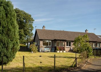 Thumbnail 1 bedroom bungalow for sale in Thorngreen Road, Kinrossie, Perth