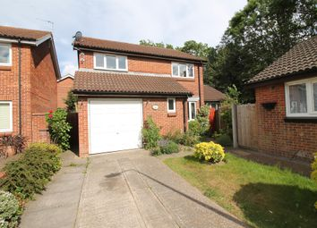 Thumbnail 4 bed detached house for sale in Columbine Mews, Stanway, Colchester
