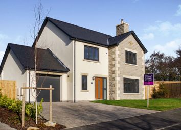 Thumbnail 4 bed detached house for sale in Briar Lea, Nether Kellet
