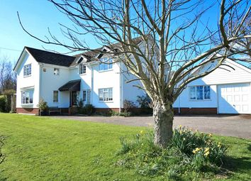Thumbnail 4 bed country house for sale in Lane, Brithem Bottom