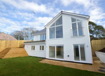 Thumbnail 5 bed detached house for sale in Littlemead Lane, Exmouth, Devon