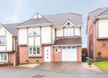 Thumbnail 4 bed detached house for sale in Blossom Grove, Langstone, Newport