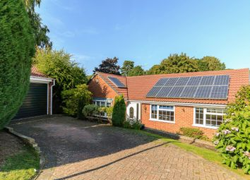 Thumbnail 3 bed detached bungalow for sale in Windermere Way, Farnham