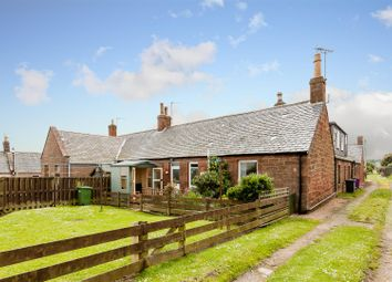 Thumbnail 1 bed semi-detached bungalow for sale in Fountain Square, Auchmithie, Arbroath