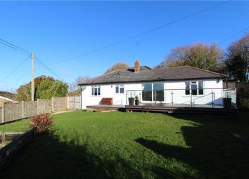 Thumbnail 3 bedroom detached bungalow to rent in Askerswell, Dorchester