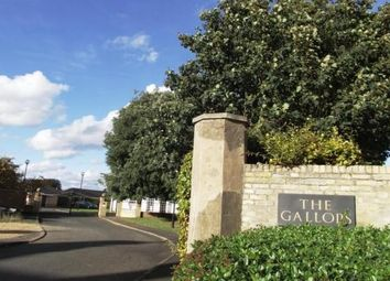 Thumbnail 2 bedroom flat to rent in The Gallops, Newmarket