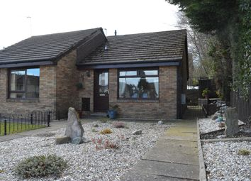 Thumbnail 1 bed bungalow for sale in Springbank Gardens, Falkirk