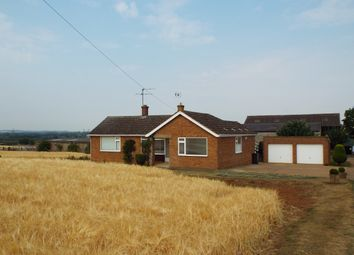 Thumbnail 3 bed detached bungalow to rent in Wellingborough Road, Wollaston, Northamptonshire