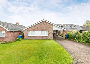 Thumbnail 3 bed detached bungalow for sale in Lancaster Road, Sudbury