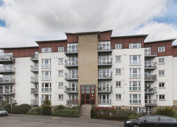 Thumbnail 3 bed flat to rent in Brunswick Road, Hillside, 5Gy