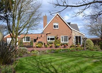 Thumbnail 5 bed detached house for sale in Beal Bank, Warkworth, Morpeth