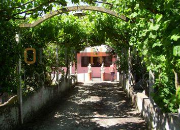 Thumbnail 5 bed farm for sale in Brejos Do Assa, Palmela, Palmela