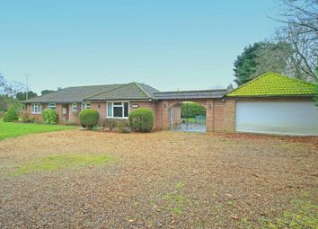 Thumbnail 3 bed bungalow to rent in Upper Moors Road, Brambridge, Eastleigh