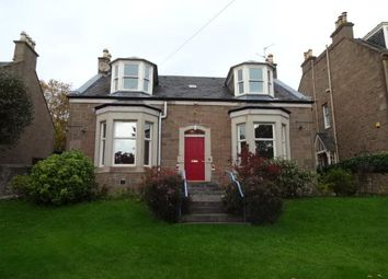 Thumbnail 4 bed detached house to rent in Adelaide Place, Dundee