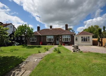 Thumbnail 4 bed detached bungalow for sale in Mill Lane, Walton-On-The-Naze