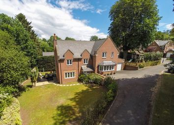 Thumbnail 5 bedroom detached house for sale in Chestnut Drive, Abergavenny