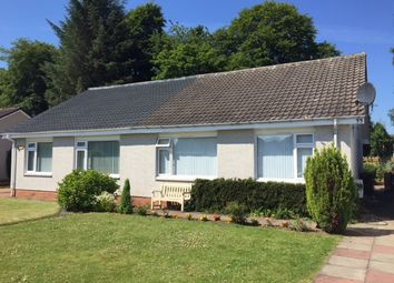 Thumbnail 2 bed semi-detached bungalow to rent in Rosemount Park, Blairgowrie