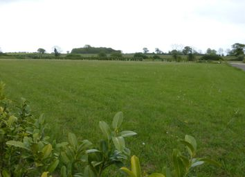 Thumbnail Land for sale in Land On East Side Of, Low Road, Wicklewood, Wymondham, Norfolk