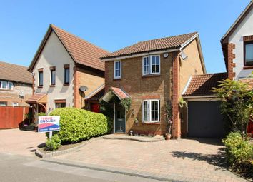 Thumbnail 3 bed detached house to rent in Puffin Close, Wickford